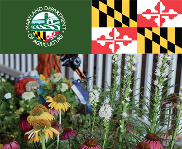 2018 maryland agriculture fairs and shows brochue