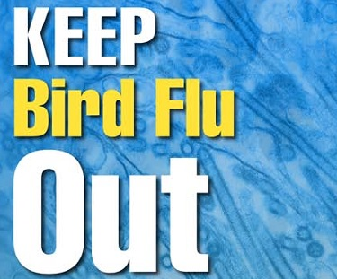 Keep Bird Flu Out