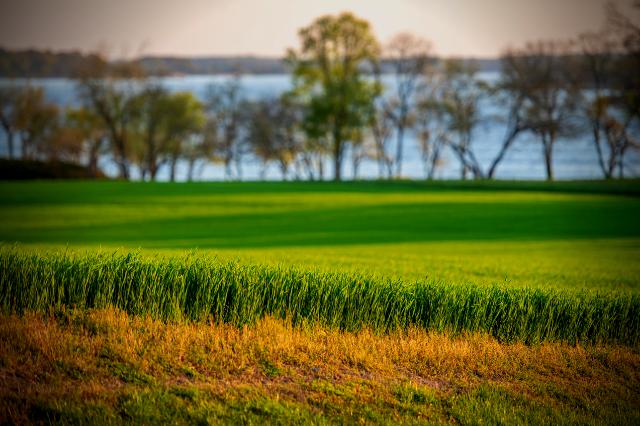 MDA Cover Crop Program Sign-Up July 1-16, 2021