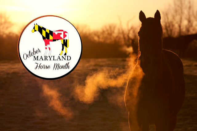 Maryland Horse Month