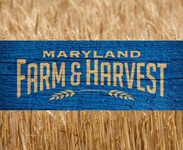 mpt farm and harvest