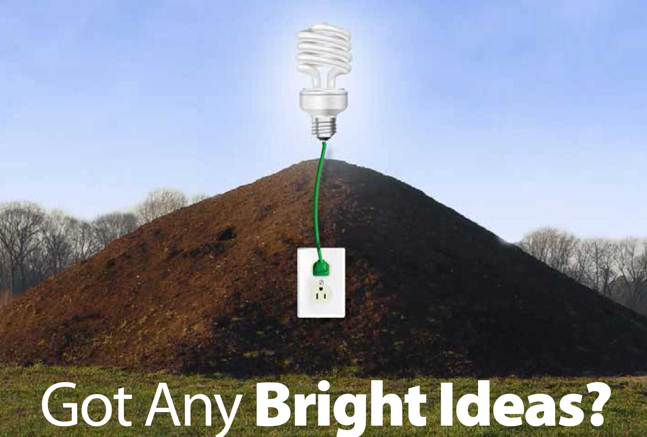 pile of manure with lightbulb