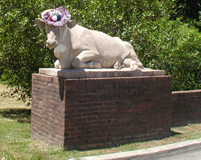 picture of cow statue