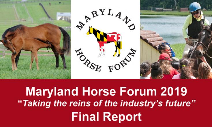 Horse Forum Report 2020