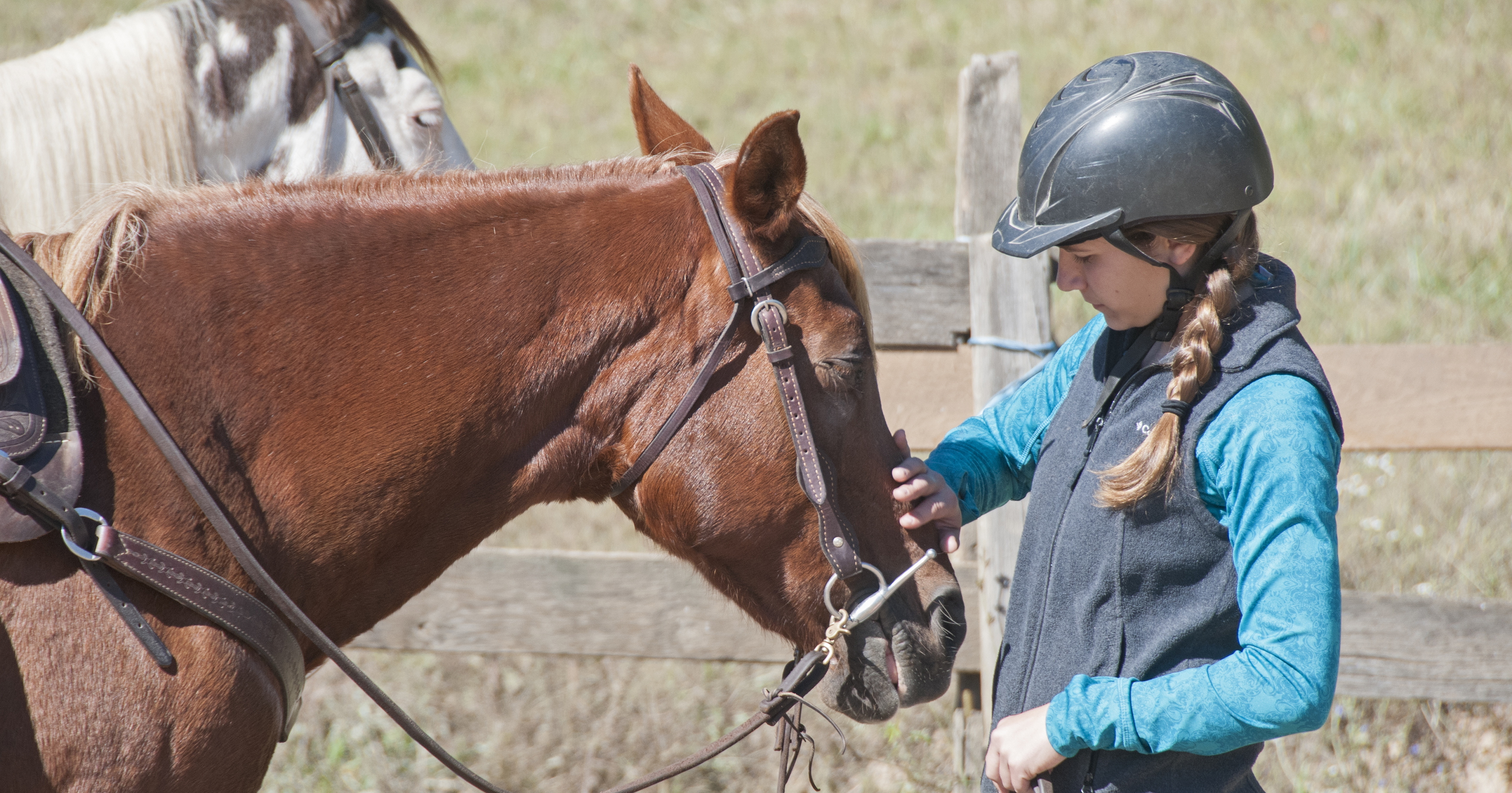 Why ride at a Maryland Licensed Stable?