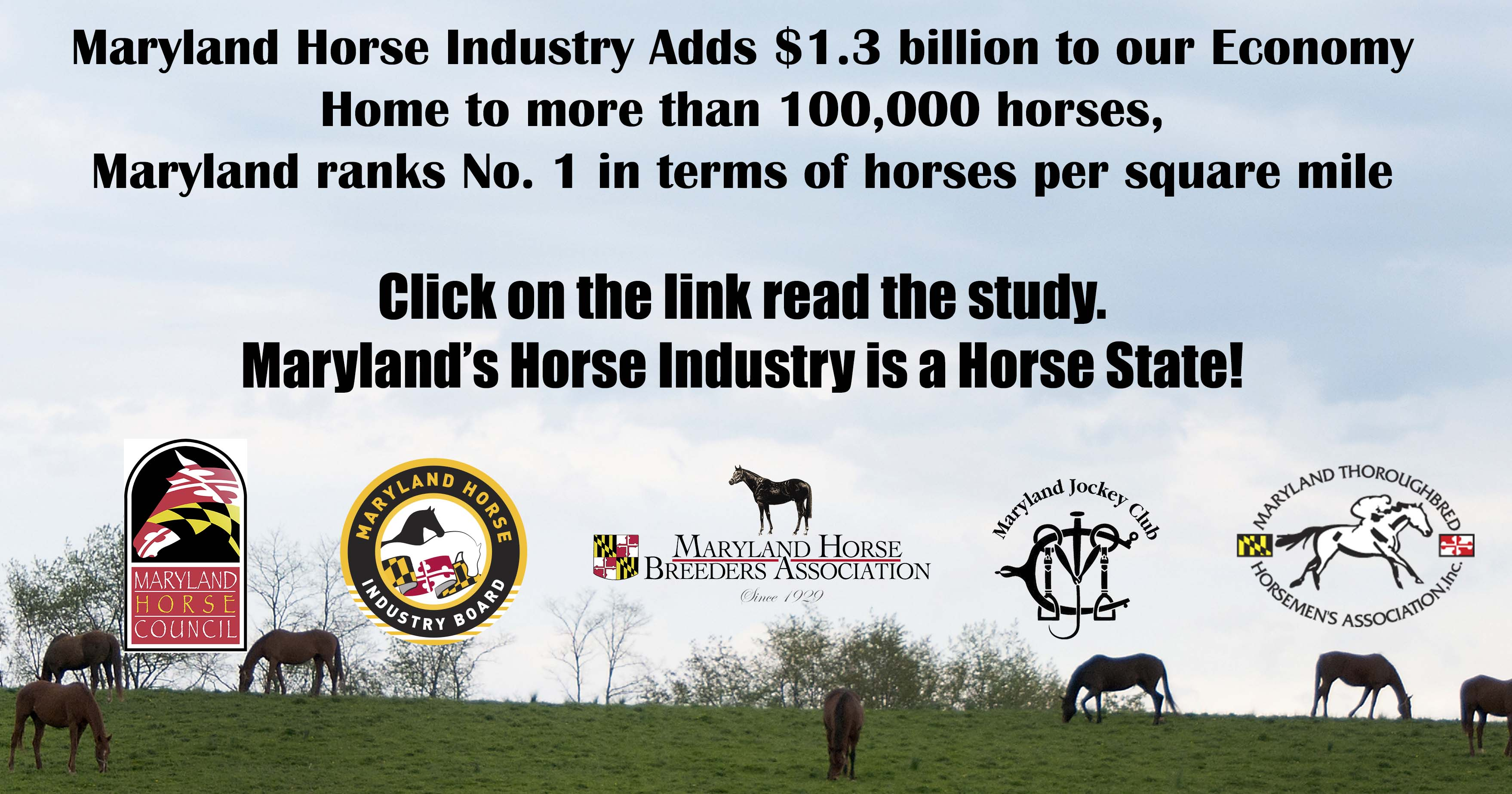 American Horse Council Maryland's Economy Study