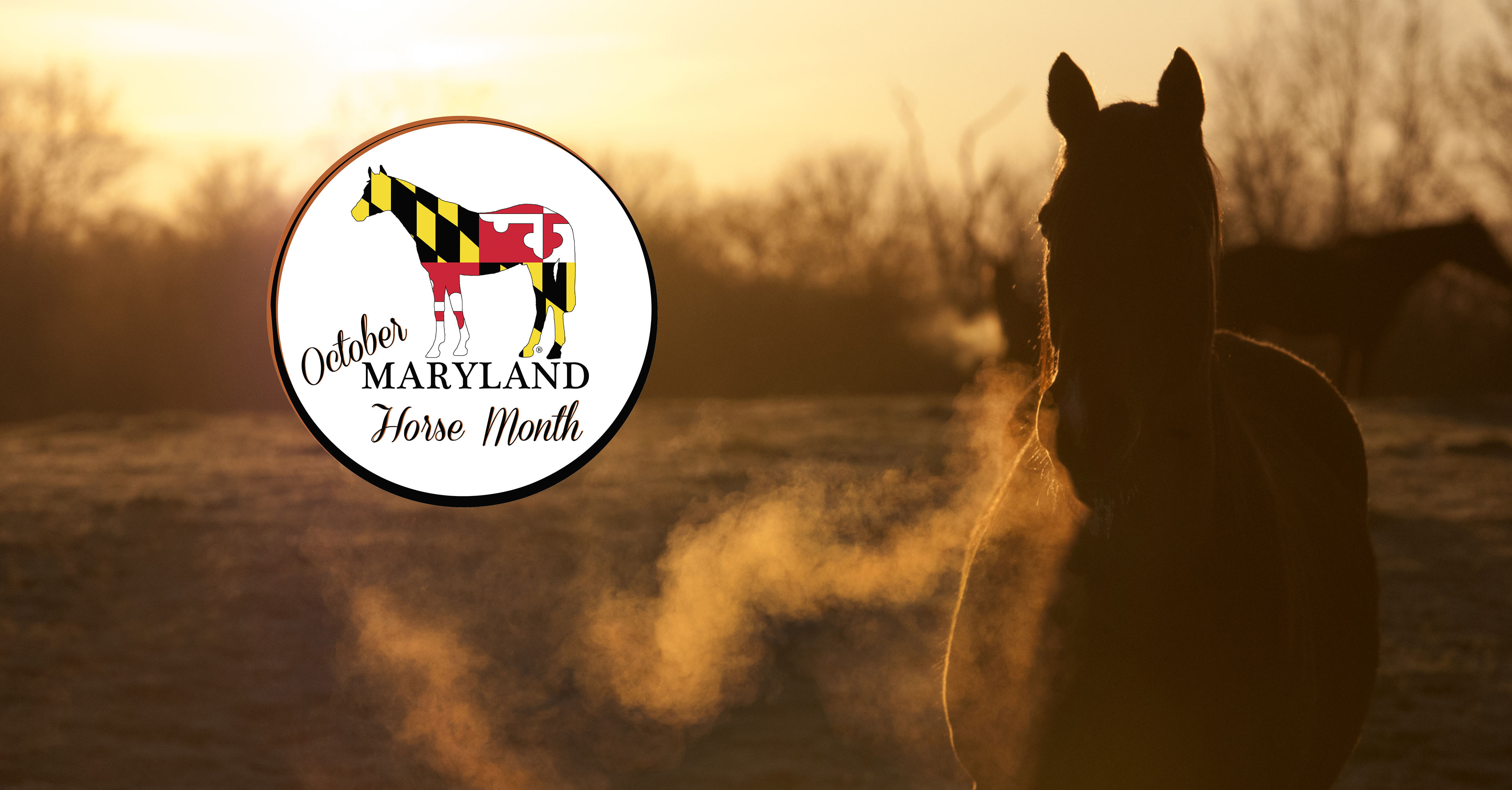 October is Maryland Horse Month