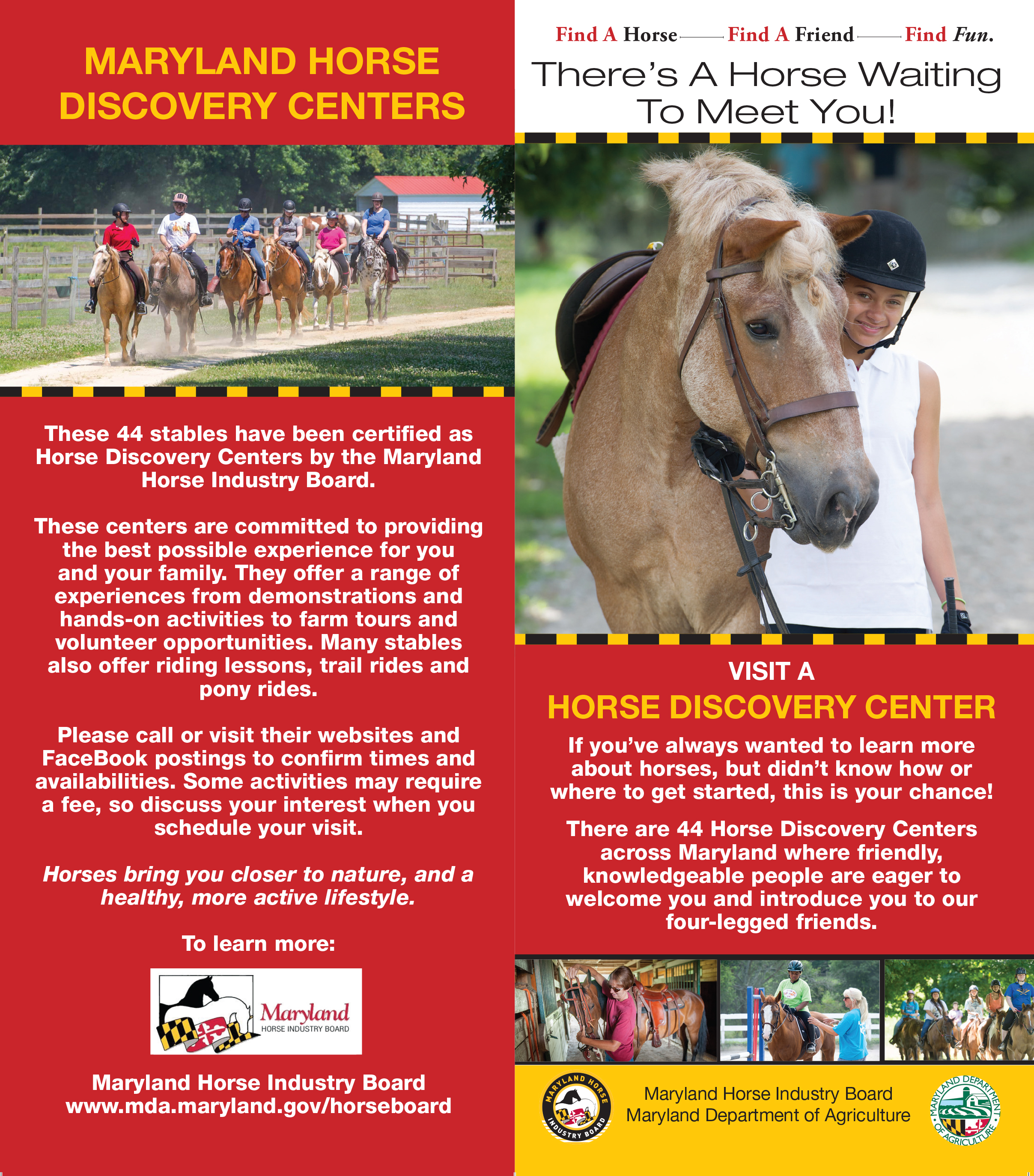 Equine Experience Center Rack Card.png